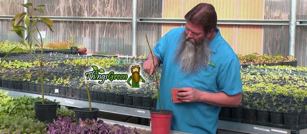 Nick Federoff Gardening